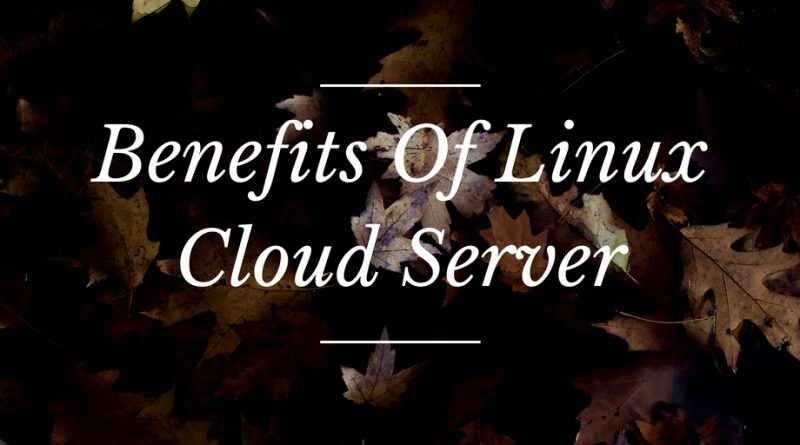Benefits Of Linux Cloud Server